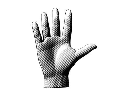 Engraving drawing human palm hand illustration isolated on white background Vettoriali