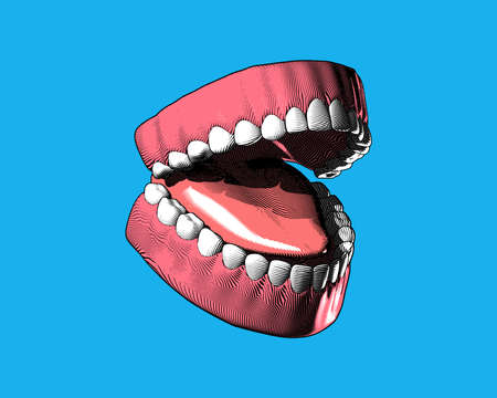 Tooth and gum color engraving drawing in perspective oblique side view high contrast lighting isolated on blue background Ilustração
