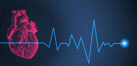 Red colorful wireframe red human heart illustration on dark  blue background with heart rate pulse beat graph