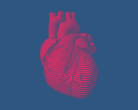 Engraving red human heart with flow line art stroke on deep blue background