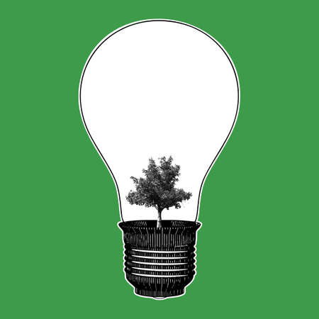 Light bulb with growing tree engraving drawing illustration isolated on green background