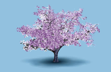 Pink cherry blossom tree engraved drawing vector illustration isolated on blue background
