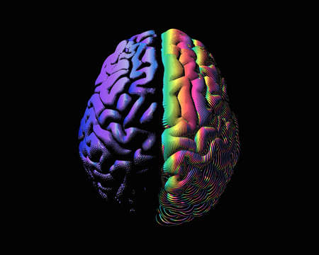 Human brain hemispheres purple left and rainbow color right brain engraving in top view illustration isolated on black background