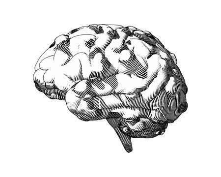 Monochrome vintage engraving mental illness brain and disease illustration isolated on white background