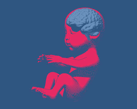 Bright red human infant baby fetus with light blue brain engraving graphic illustration in side view isolated on deep blue background Ilustrace