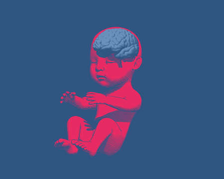 Bright red human infant baby fetus with light blue brain engraving graphic illustration in perspective front view isolated on deep blue background