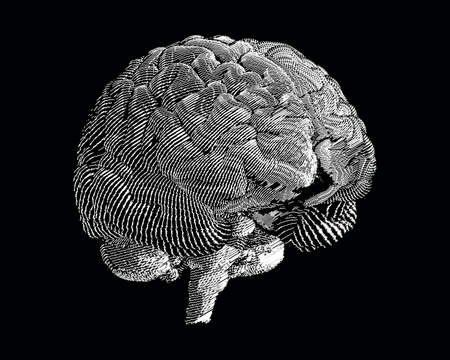 White volume engraving and doodling brain illustration in perspective view isolated on black background