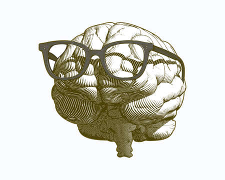 Monochrome vintage engraving human brain with retro old glasses illustration in front view isolated on white background