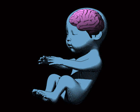 Blue human infant baby fetus with pink brain engraving illustration in side view isolated on black blackground Ilustrace
