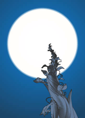Monochrome engraving drawing beanstalk worm eye view growing to the moon illustration isolated on night blue background