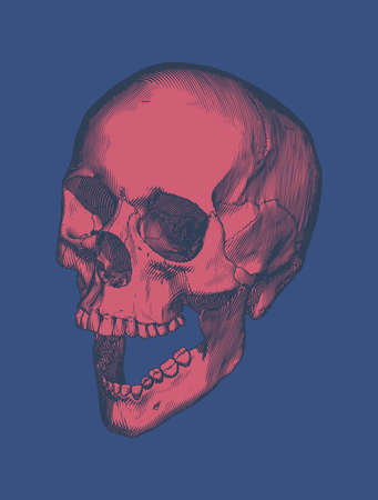 Red vintage engraving drawing human skull open jaw perspective high angle camera view isolated on blue background