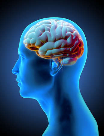 3D rendering human head side view xray shading with colorful glowing brain illustration isolated on black background with clipping path for die cut to compositing on any artwork design Stock fotó