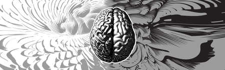 Monochrome engraved drawing human brain with different style of left and right cerebral hemispheres illustration isolated on abstract element background