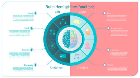 Brain hemispheres functions left analytical and right creative conceptual infographics icon set vector illustration on colorul pastel background