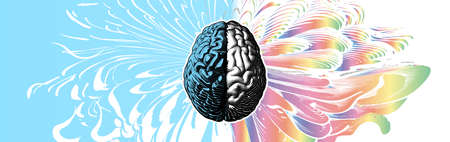 Engraved drawing human brain in different style of left and right cerebral hemispheres illustration isolated on abstract colorful element background 向量圖像