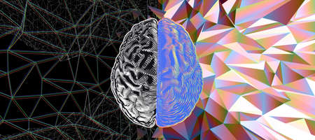 Human brain hemispheres black and white on left and rainbow color on right engraving style in top view vector illustration isolated on low poly crystal and wireframe background