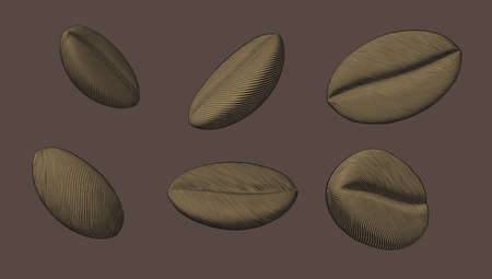 Monochrome engraved vintage drawing coffee bean set vector illustration isolated on brown background