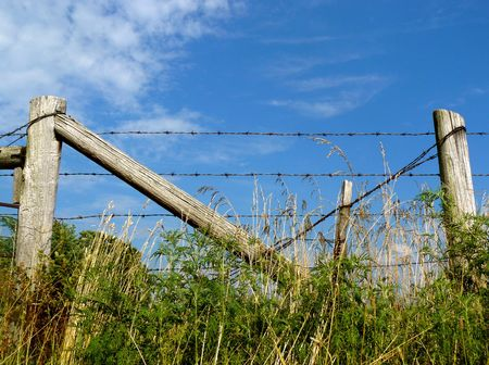 This barbed wire ranch fence dividing a pasture is set against a blue sky Stock Photo - 3500282