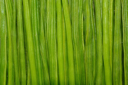 closeup image of fresh moringa oleifera dumstick vegetable. photo