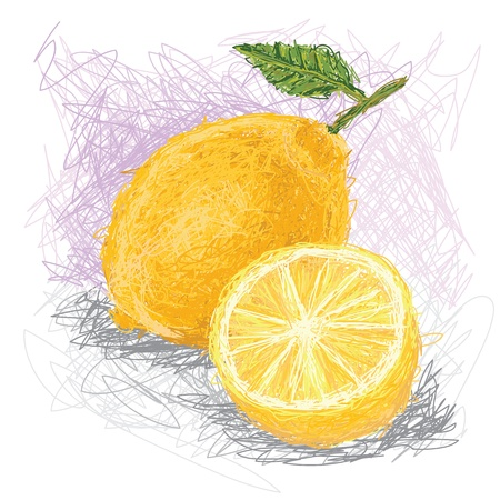 closeup illustration of a fresh lemon fruit. Illustration