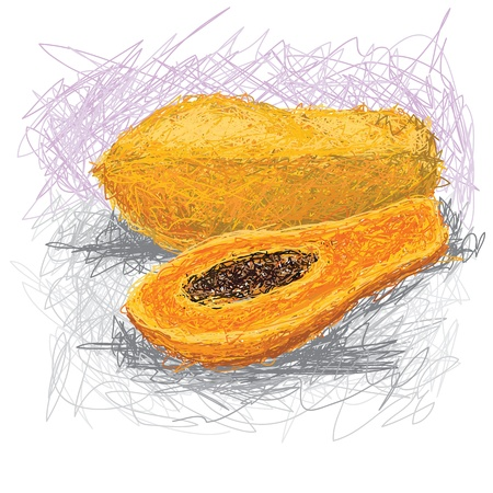 closeup illustration of a fresh papaya fruit.