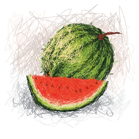 closeup illustration of a fresh watermelon fruit. Vector