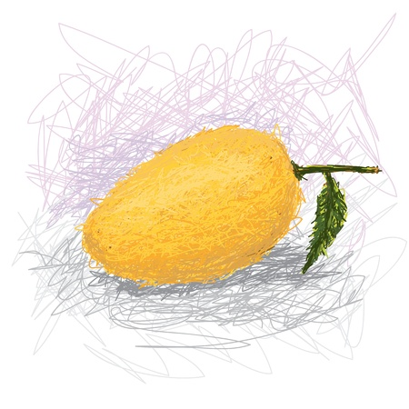 closeup illustration of a fresh mango fruit. Illustration