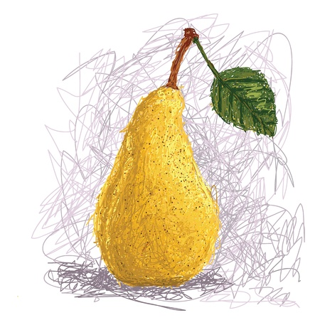 closeup illustration of a fresh pear fruit  Vector