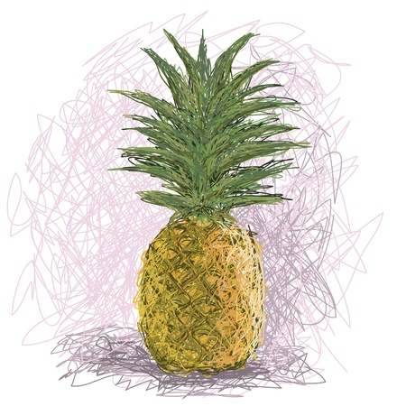 closeup illustration of a fresh pineapple fruit  Stock Vector - 14264405