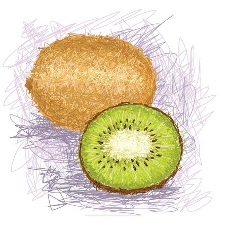 kiwi fruit: primer ejemplo de un kiwi fresco