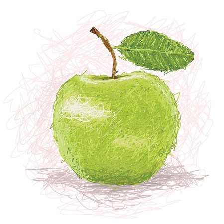 closeup illustration of a fresh green apple fruit  Vector