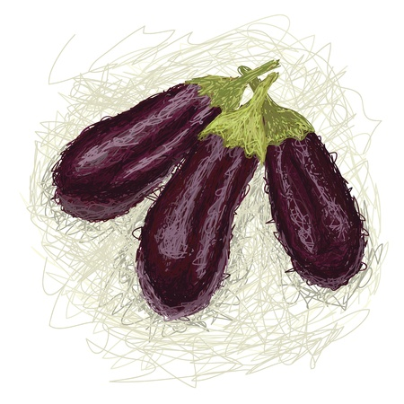 closeup illustration of a fresh eggplant vegetable Stock Vector - 14264402