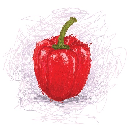 pimento: closeup illustration of a fresh red bell pepper vegetable. Illustration