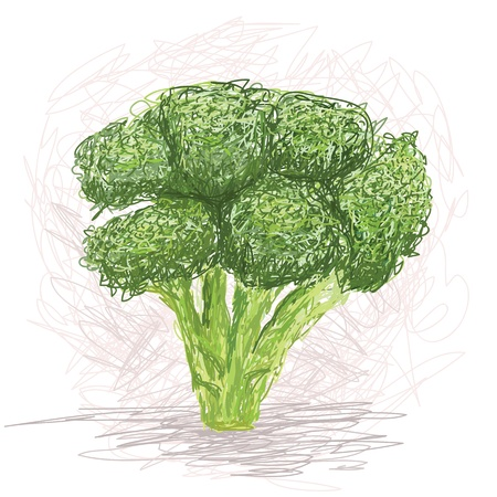 broccoli salad: closeup illustration of a fresh broccoli vegetable.