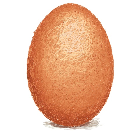 closeup illustration of a raw brown chicken egg isolated. Vector