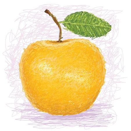 pomme jaune: illustration gros plan d'une pomme fra�che jaune.
