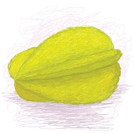 closeup illustration of a fresh ripe star fruit. Stock Vector - 14523506