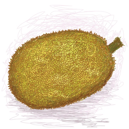 closeup illustration of a fresh ripe jackfruit.
