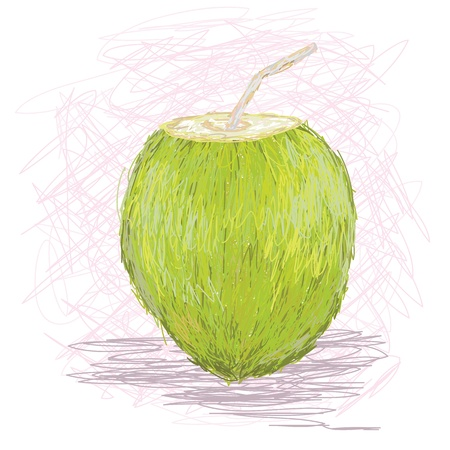 coconut water: closeup illustration of a fresh coconut fruit juice drink. Illustration