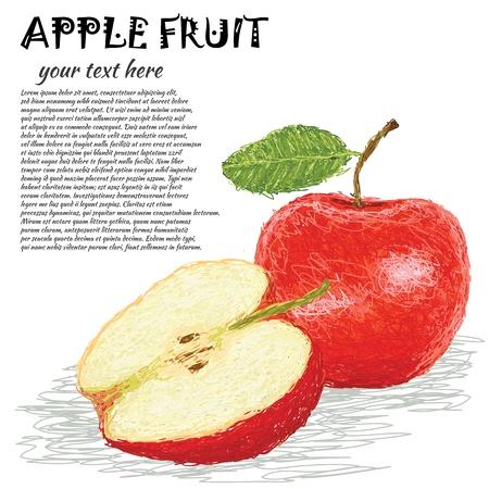 apple leaf: closeup illustration of fresh apple fruit with half sliced