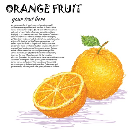 orange cartoon: closeup illustration of a fresh orange fruit whole and half sliced  Illustration