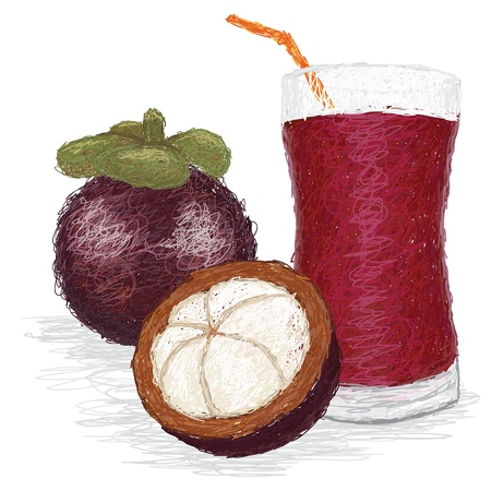 closeup illustration of a fresh mangosteen fruit juice. Vector