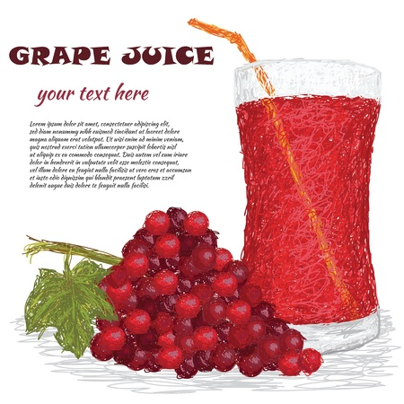 closeup illustration of fresh bunch of grapes and a glass of grape juice isolated in white. Vector