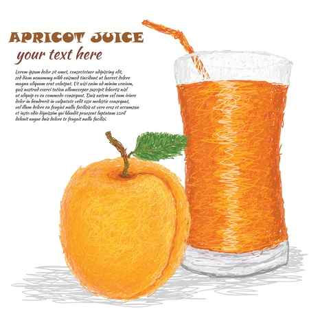 closeup illustration of fresh apricot fruit and apricot juice isolated in white background.