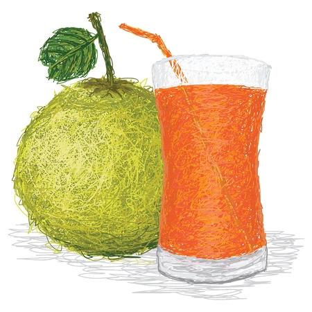 펄프: 신선한 포멜로 과일과 포멜로 주스의 유리의 근접 촬영 그림 흰색 배경에 고립. 일러스트