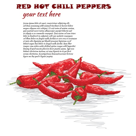 cayenne: closeup illustration of group of red hot chili pepper isolated in white background