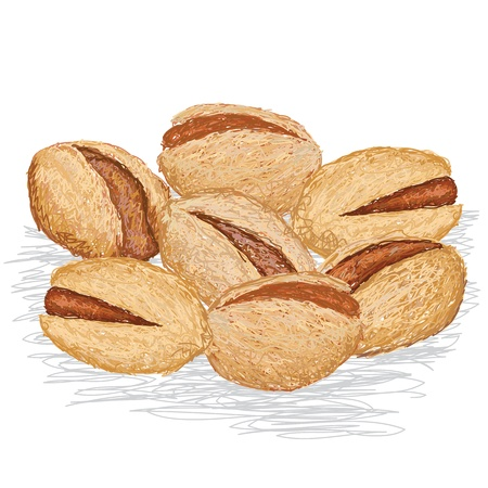 nutshell: closeup illustration of group of pistachio nuts isolated in white background.