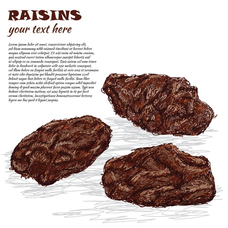 raisin: closeup illustration of dried raisins isolated in white background.