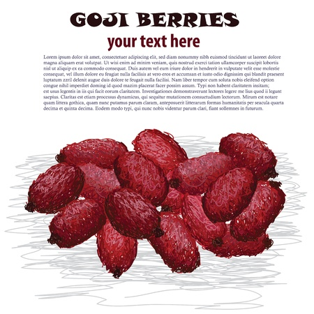 closeup illustration of fresh heap of goji berries. Vector