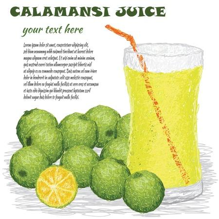 lemonade: closeup illustration of calamansi juice isolated in white background